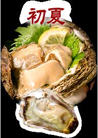 初夏 岩牡蠣