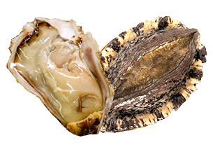 黒アワビ&岩牡蠣