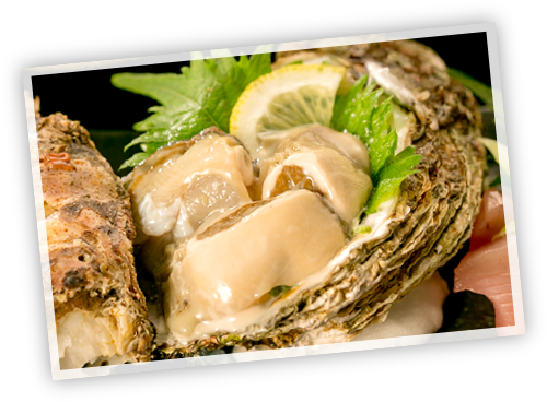 岩牡蠣の刺身