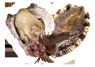 黒アワビ&岩牡蠣&虎魚