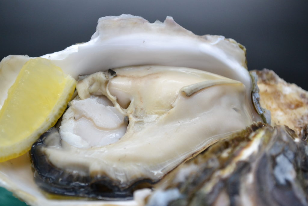 岩牡蠣ページに料理内容追加予定